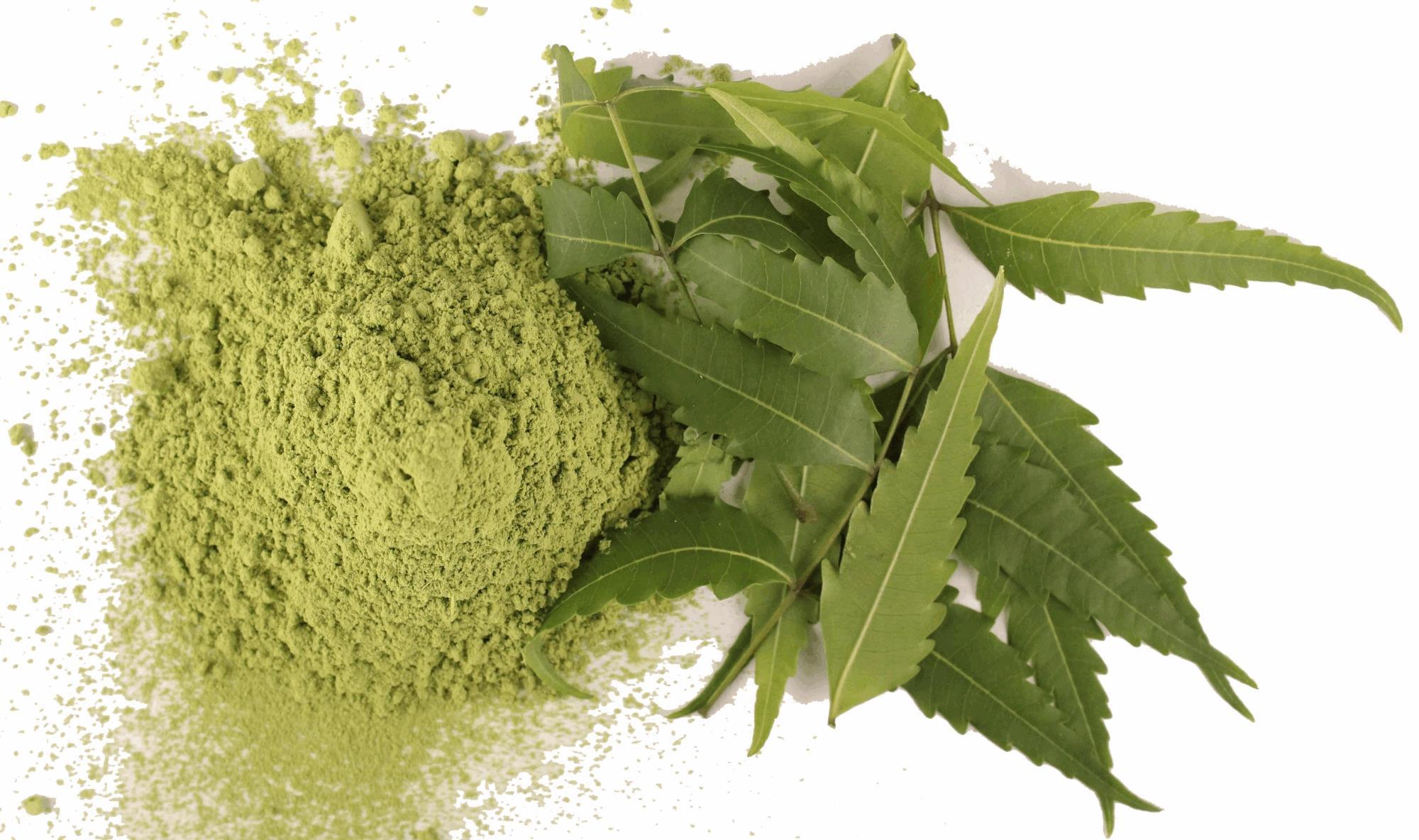 poudre de neem